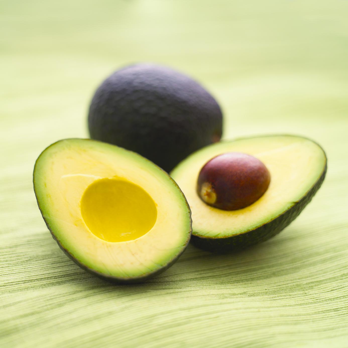 ... avocado society was held in the ii world avocado congress in 1991 many
